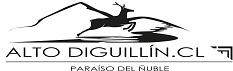 altodiguillin.cl